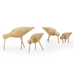 Shorebirds-Coral-All