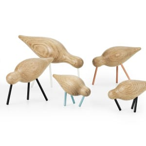Shorebirds-Group